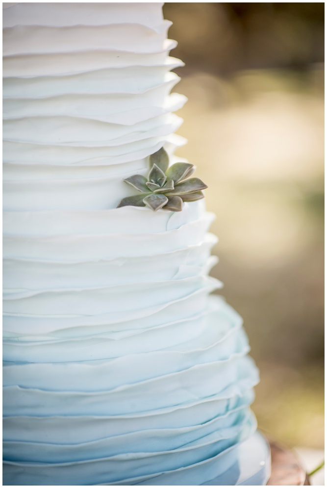 Ruffled Ombre Wedding Cake - Swiss Family Robinson styled shoot - by Aislinn Kate Photography_0239.jpg