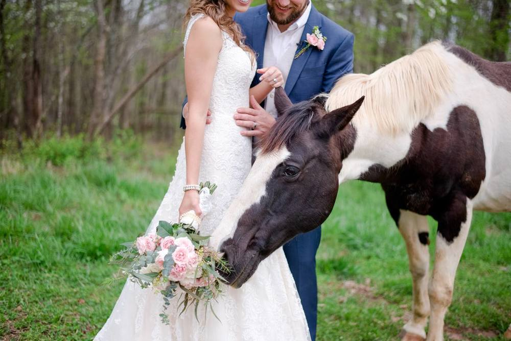 Mystic Connecticut backyard wedding with horses_0061.jpg
