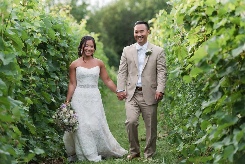 Vineyard wedding in Connecticut