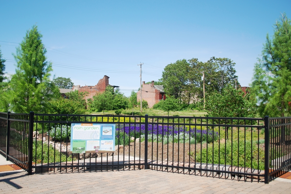 Old North Raingarden includes a retention basin and native plants that help to retain water.