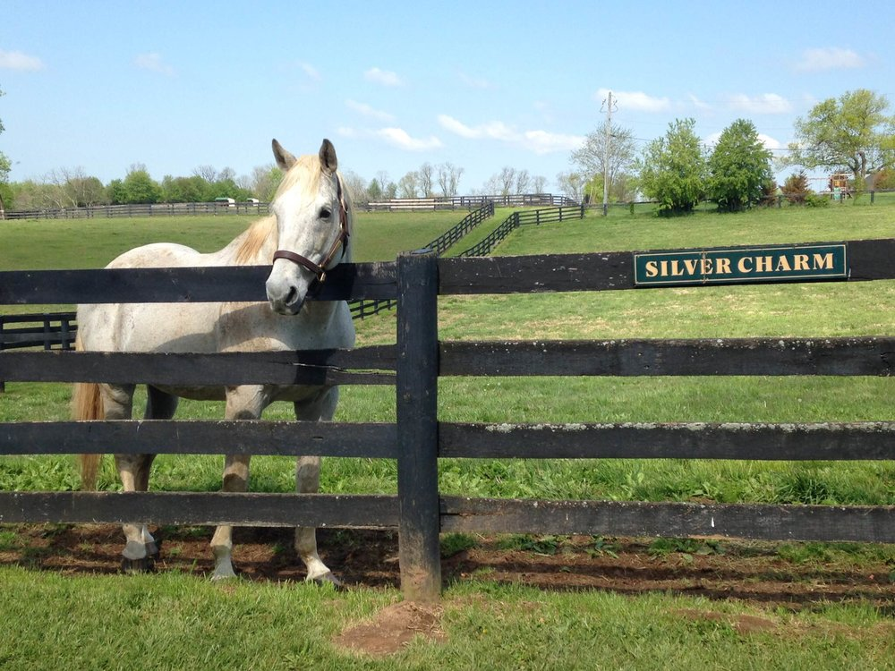 Derby and Preakness winner Silver Charm