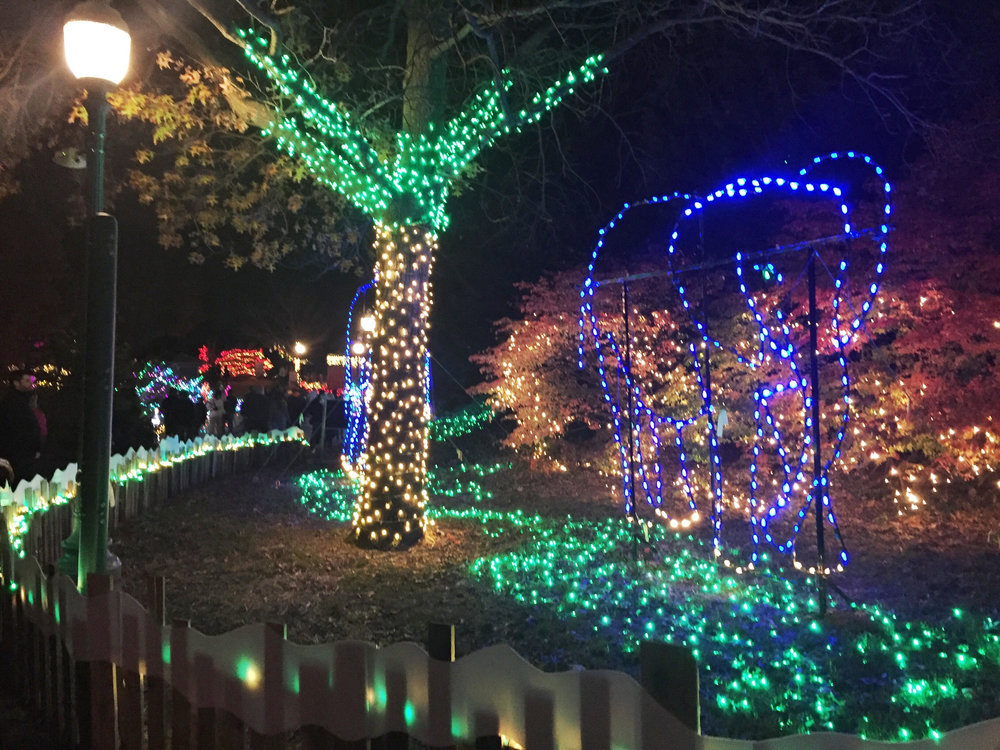 2016 Wild Lights at the St. Louis Zoo