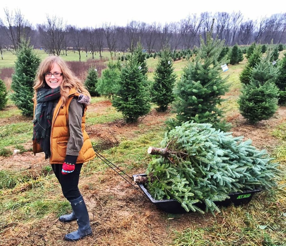 Heritage Valley Tree Farm - chopping down our 2 Christmas Trees 2015