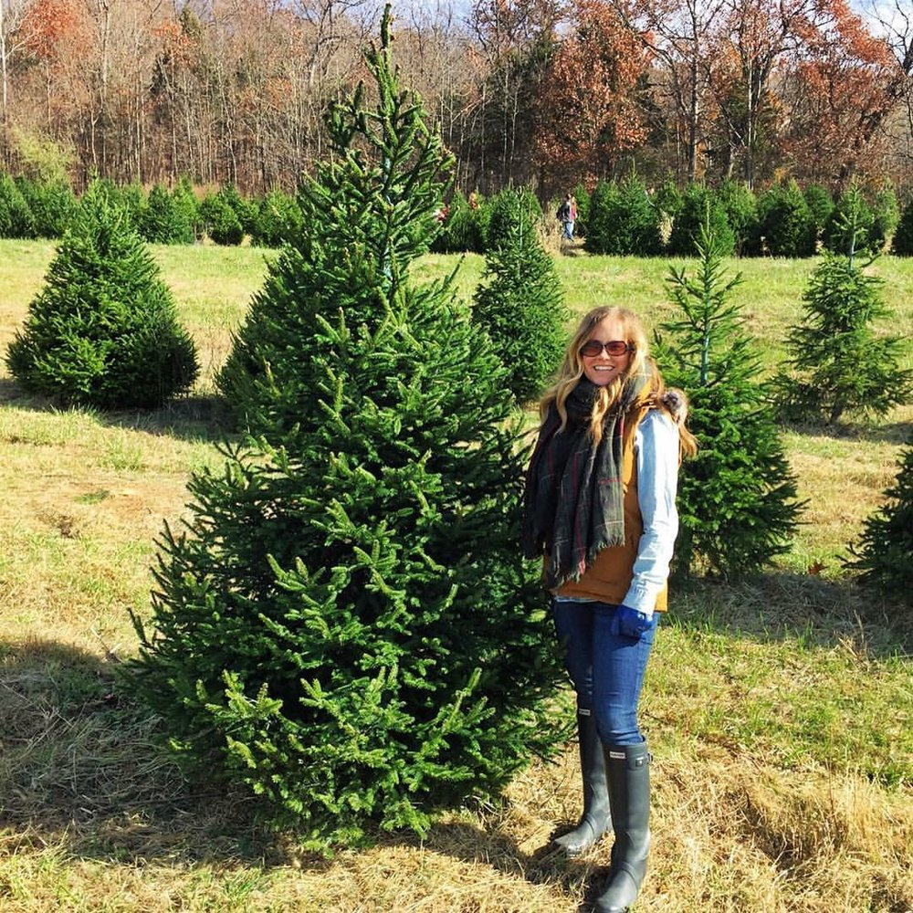 Pea Ridge Forest Christmas - chopping down our 2 Christmas trees 2016
