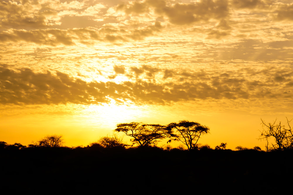 Kenyan sunrises are the most goregous I've ever seen. Being so close to the equator the sun rises and sets quickly - in about 30 minutes