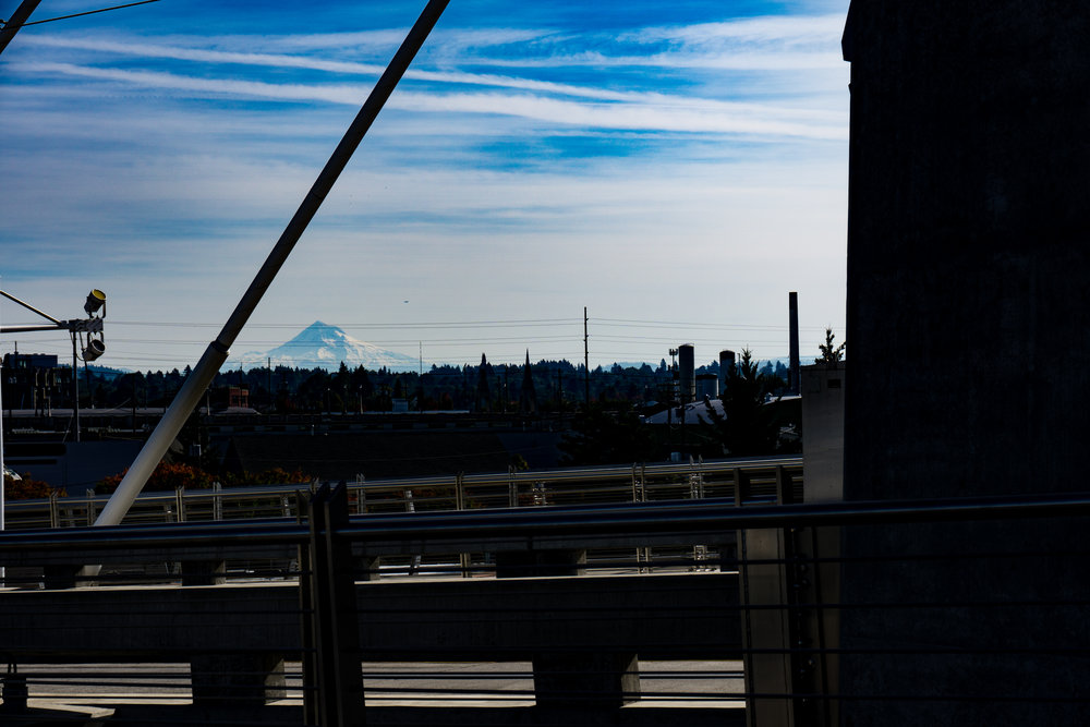 View of Mount Hood from the Tilikum Bridge