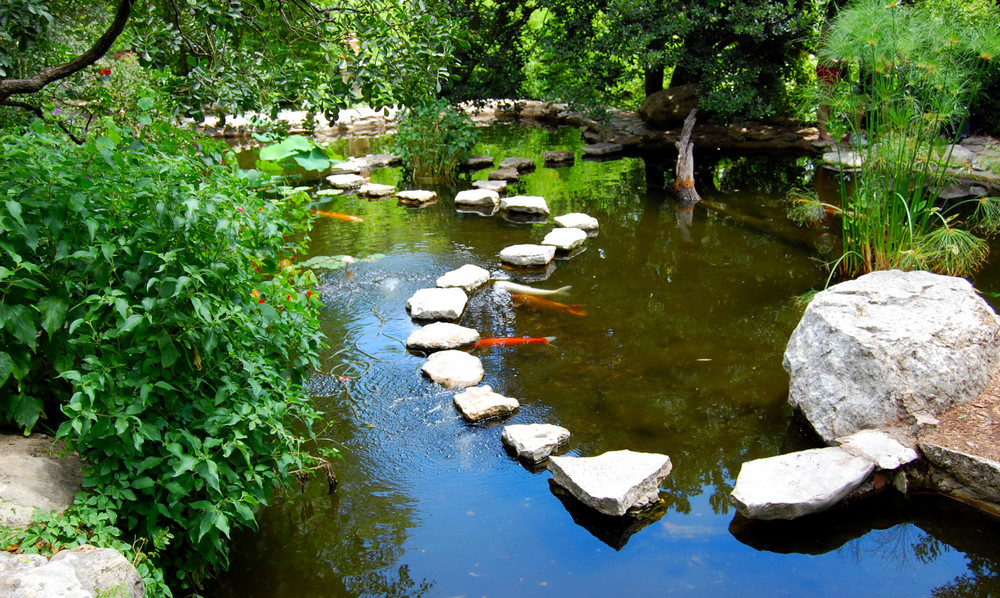 Zilker Botanical Garden Is Located On The South Bank Of The Colorado River,  Just South Of Downtown Austin. Stretching Across 26 Acres, ...