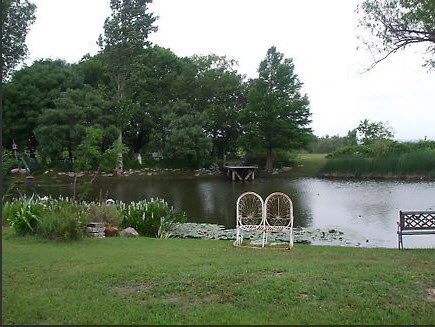 Water lilies, garden benches on pond edges