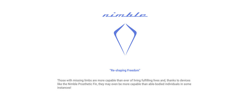 nimble template website-02.jpg