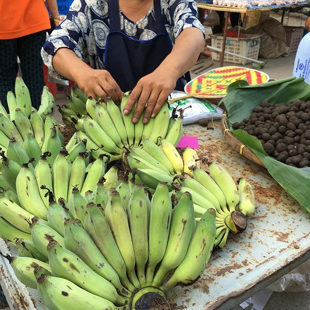 Beautiful bananas in the local market in Chiang Mai.
