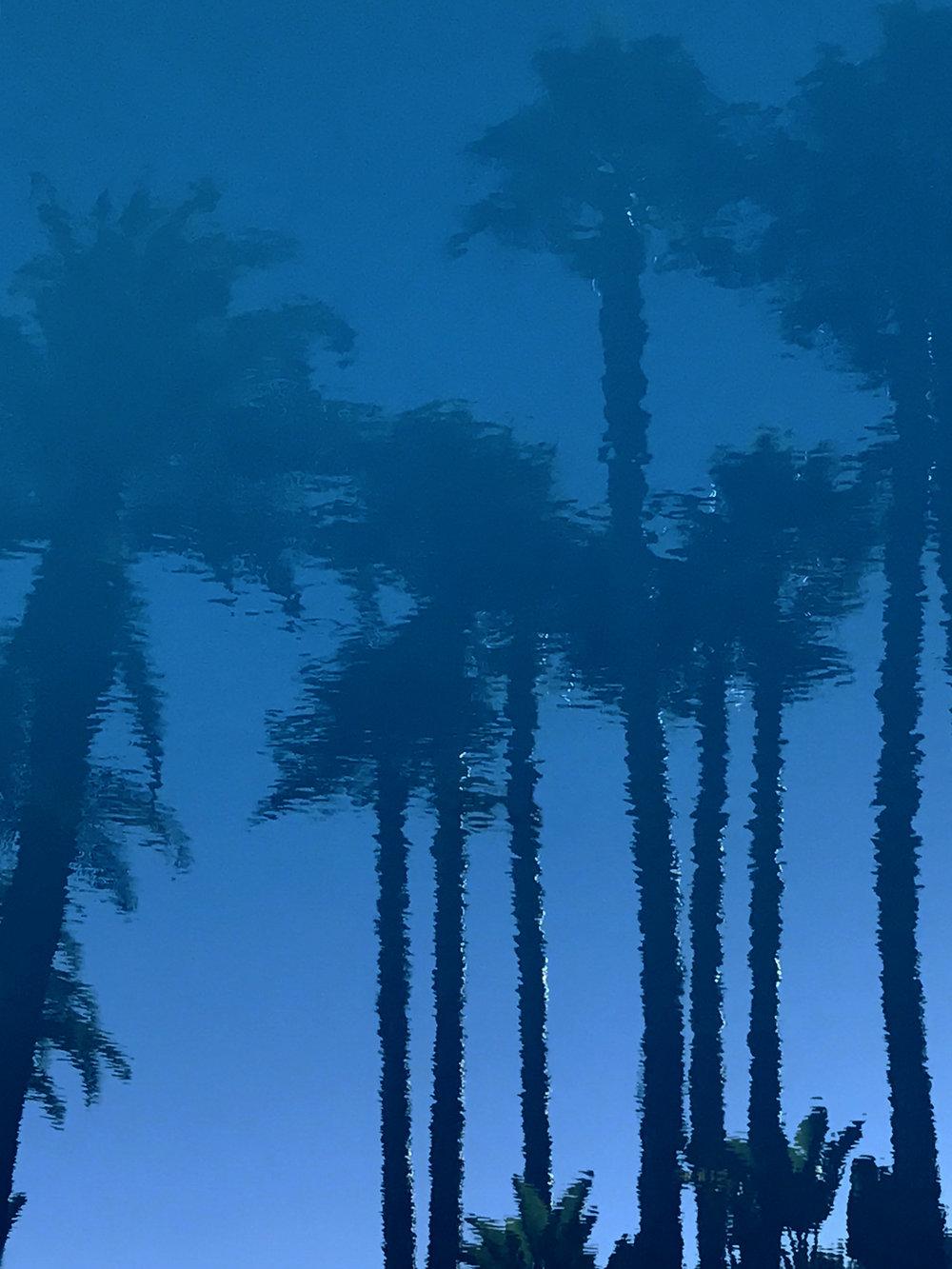 Poolside - Santa Barbara 2017