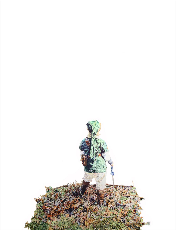 Link (The Wanderer)