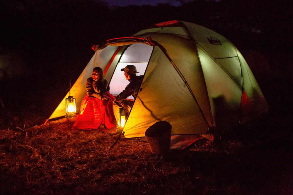Leonotis Camp