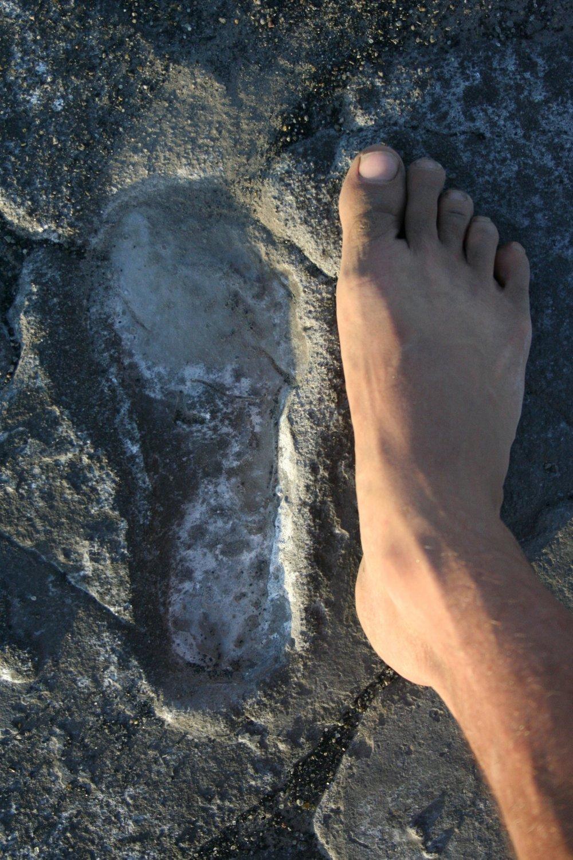 Homonid Footprints - over 100,000 years old