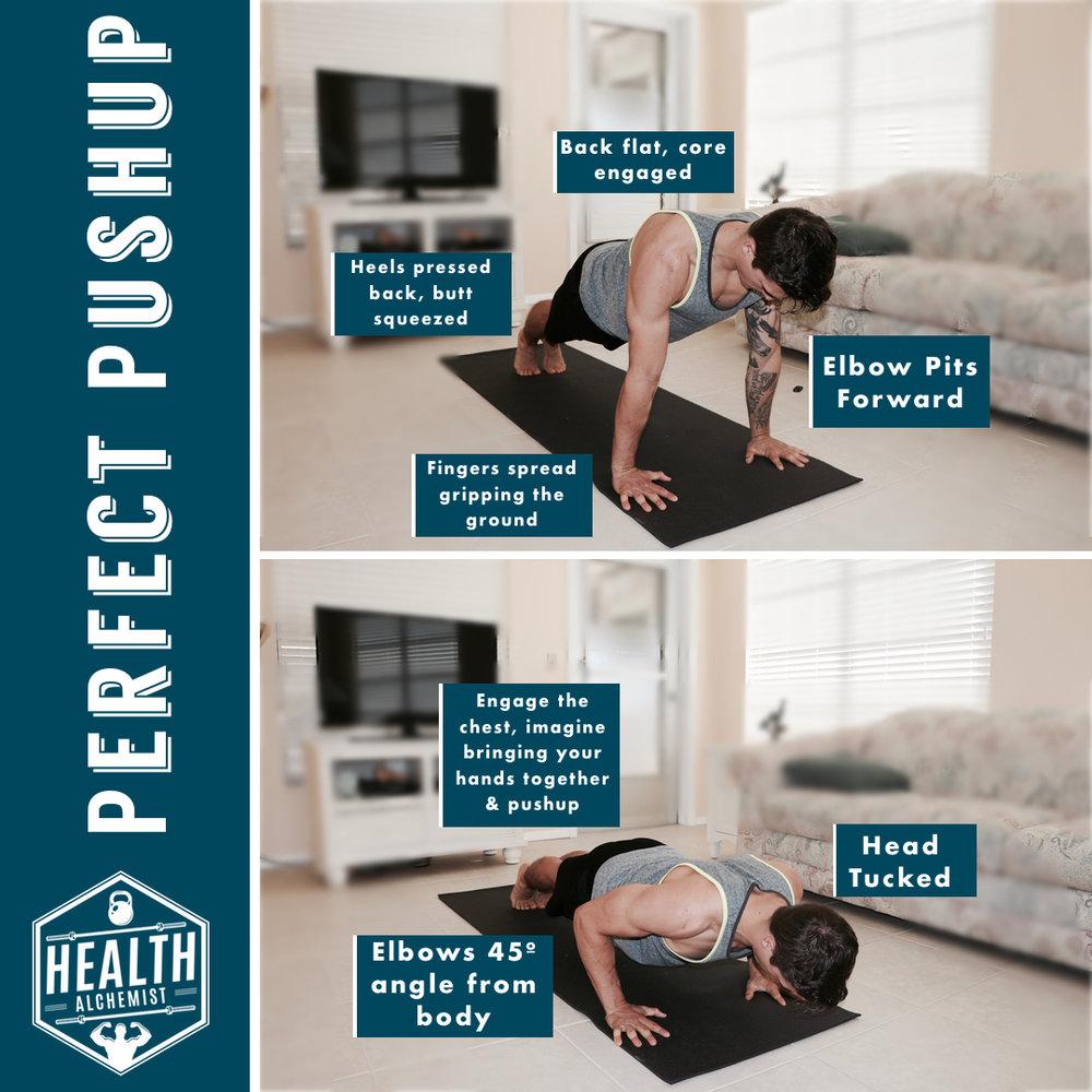 pushup exercise .jpg