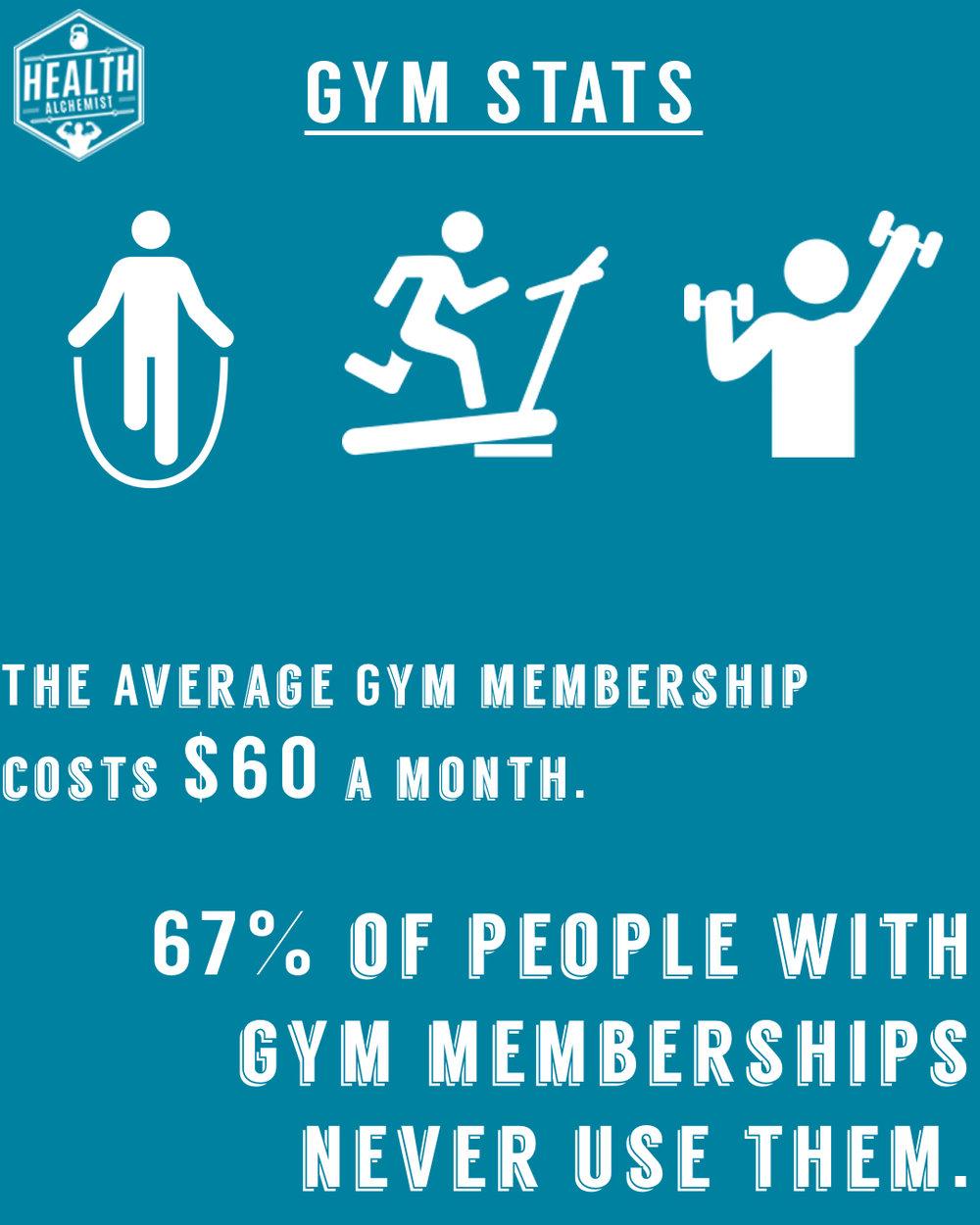 Gym Stats.jpg