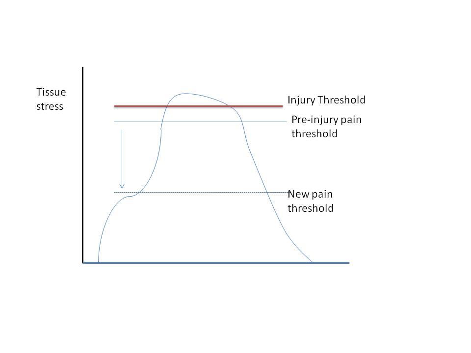 injury and pain thresold