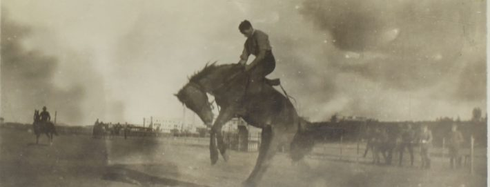Image above:  Artist unknown,   Member of the 2nd Remount Unit AIF, training a new horse for Light Horse Units,  Postcard HRL Light Horse Museum Collection.