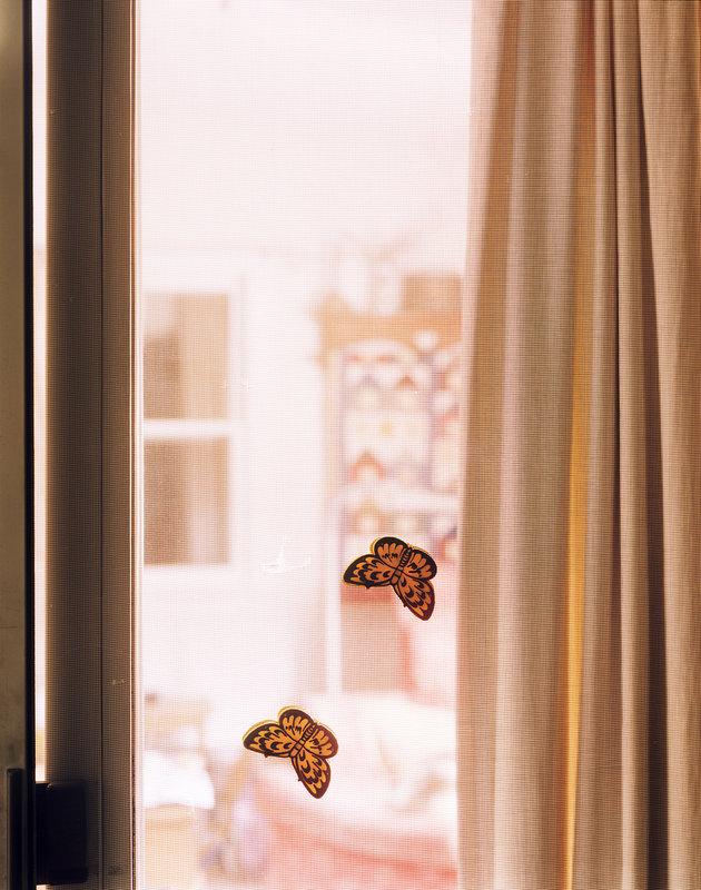 Window9.jpg