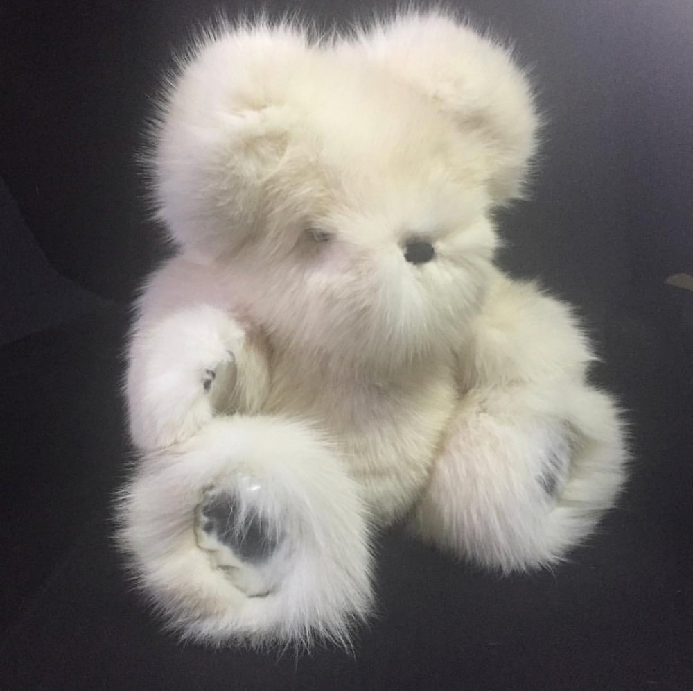 NaME THE BEAR - TO RAISE AWARENESS AND MONEY FOR