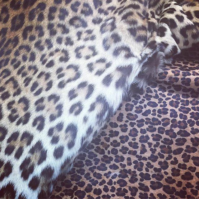 #leopardprint #fur @rebeccabradleylondonfur