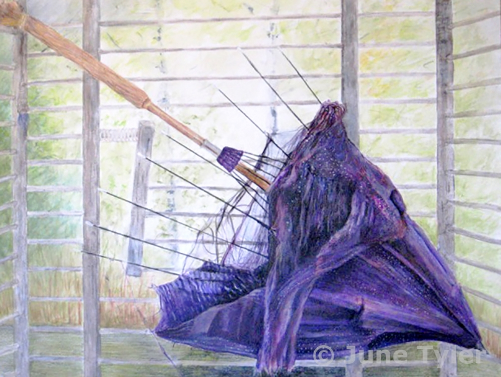 "Untitled - For this drawing, I arranged a slightly broken antique umbrella inside an old (but clean) chicken cage. The setting is by the window in my studio with a view slightly visible of the landscape outside.  30"" x 22""  Mixed media drawing: Golden artist paints and mediums, colored pencils and watercolor pencils"