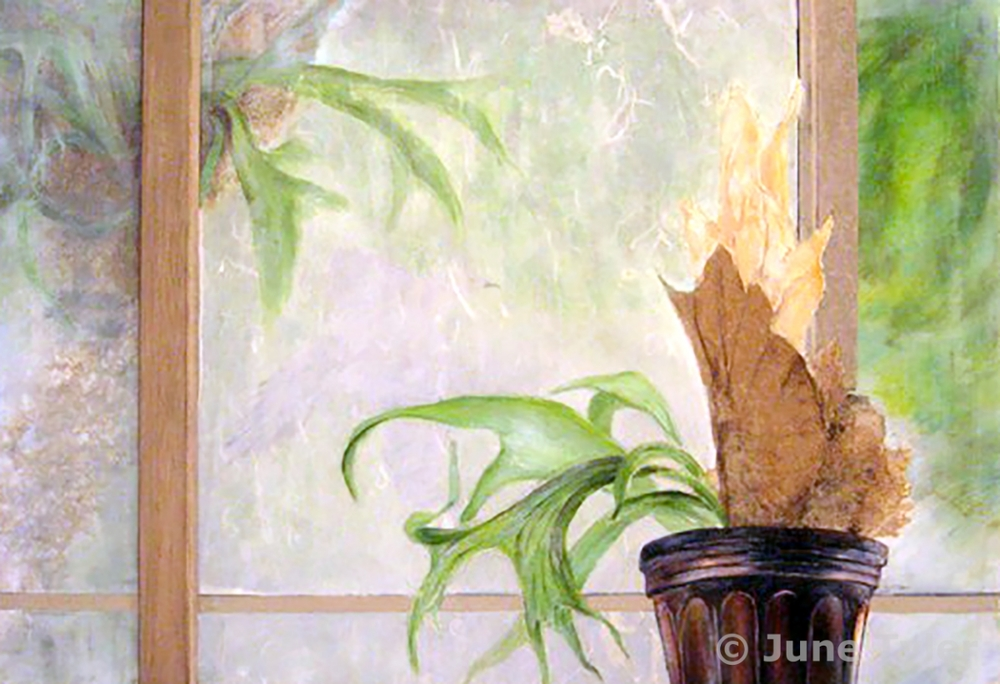 """Staghorn"" For this drawing I wanted to show a domesticated staghorn plant inside and outside the window a verson of it in its natural habitat. 35.5"" x 26"" Mixed media: Golden artist colors and mediums, handmade paper, wood and assorted drawing materials"