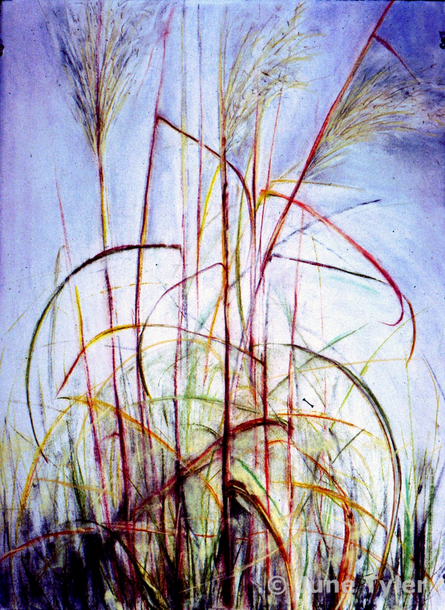 """Fall Meditation"" 2004 Pastel Drawing 22"" x 30"""
