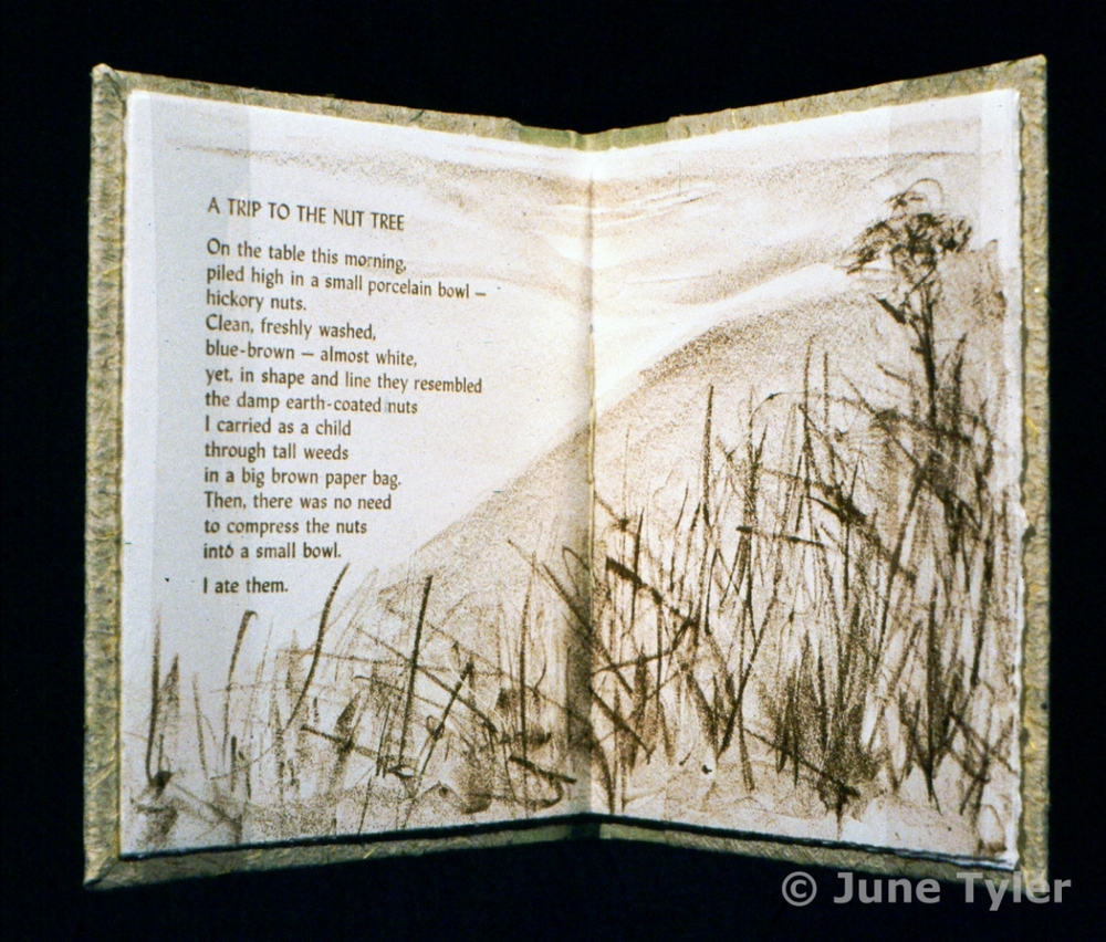 """A Trip to the Nut Tree"" 1988 Artist Book 7"" x 6"" x .5"""