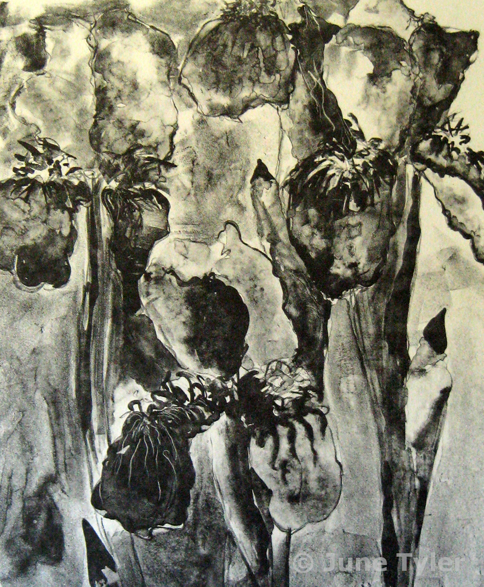 """Iris"" V/VI Lithograph - small edition on white and gray Rives BFK 15"" x 12"" paper size 1987"