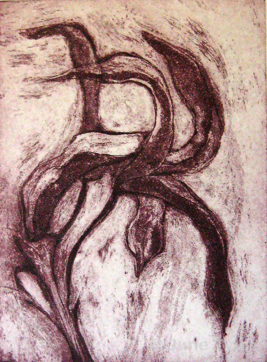 """""""Seed Pods in the Wind"""" 2007 Intaglio 8/14 6"""" x 4.25"""" (image size)"""