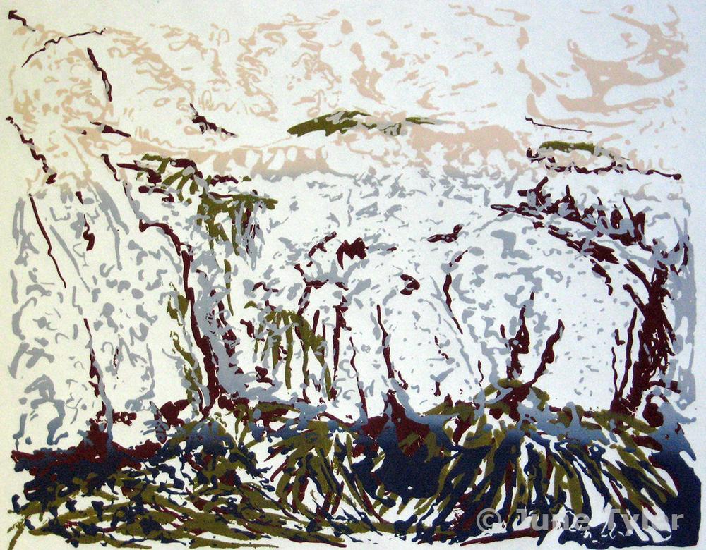 """Low Tide"" 2011 Silkscreen (18/21 - 21/21 still available) 10"" x 8"""