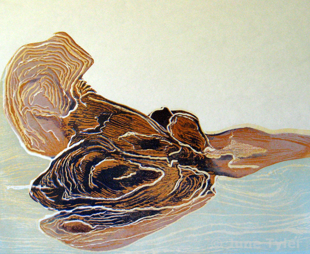 """""""From the Sea"""" 2011 Color Woodcut 8/10 9.75"""" x 12"""" approx. image size"""