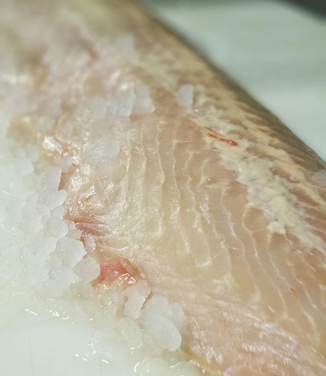 Kyle just filleted up some majestic wild sturgeon. We have one 10# fillet not spoken for... common somebody wants this for tomorrow  delivery-- Heck If you call me now I'll take it out to ya today! (Yes I staged ice for effect, nice huh)