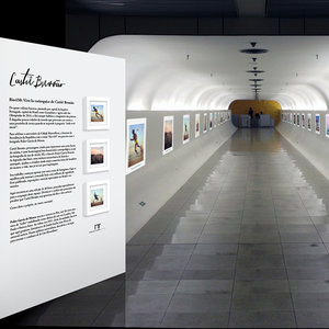 Exhibition at Brasilia's Presidential Palace