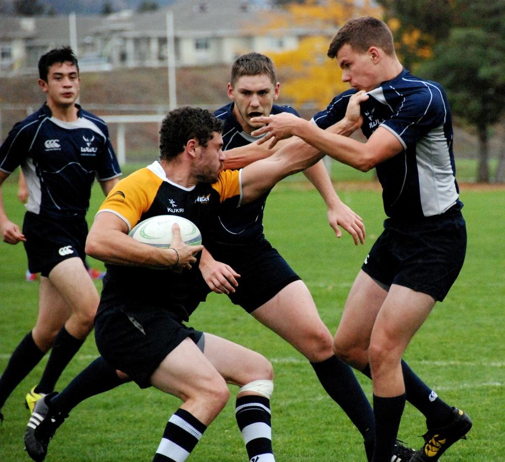 rugby-1054276.jpg