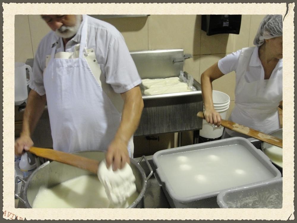 mozza-221-1024x768.jpg