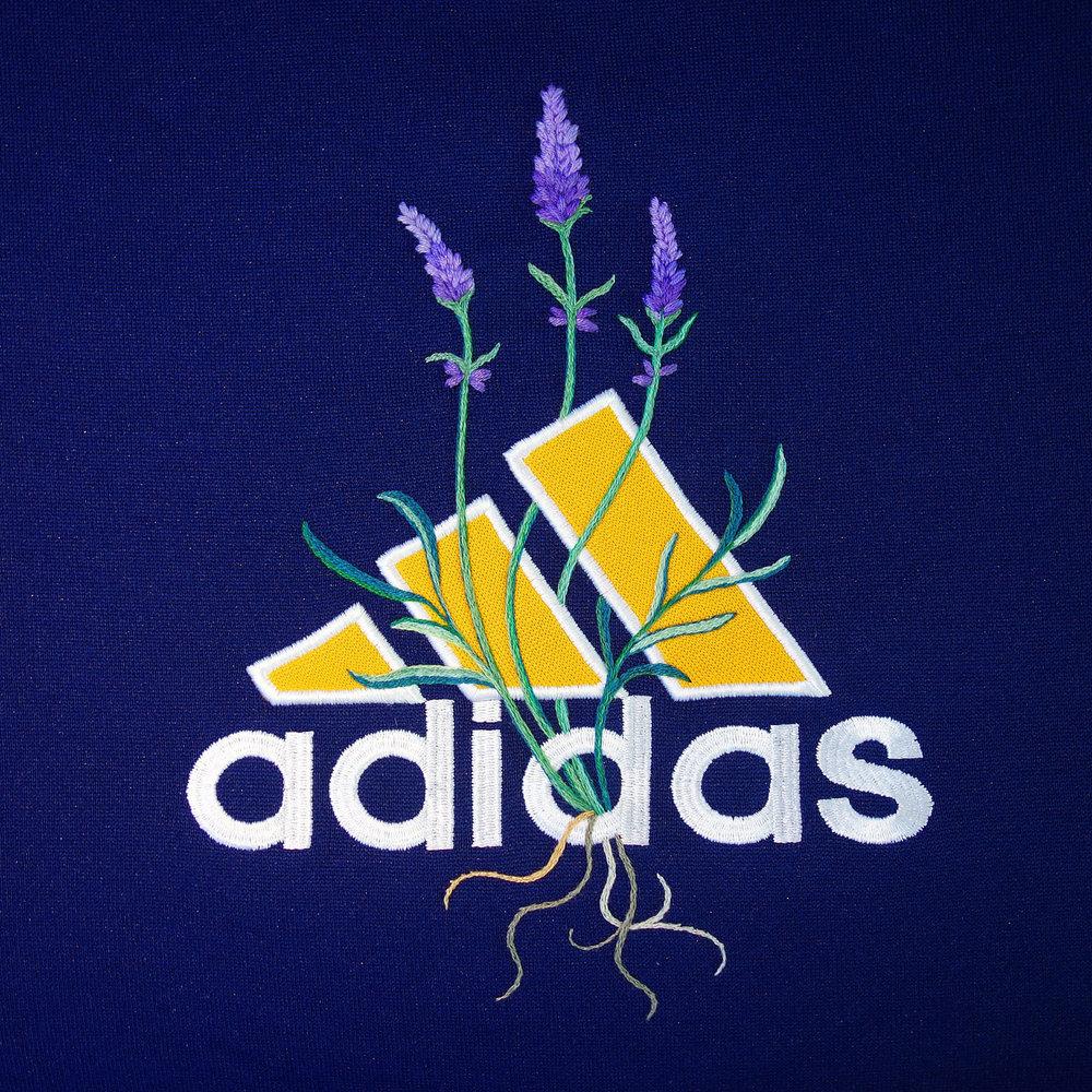 Adidas\Lavender\   jtmerry.com