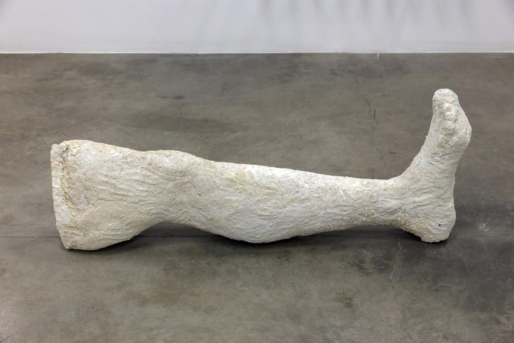 Leg 2015