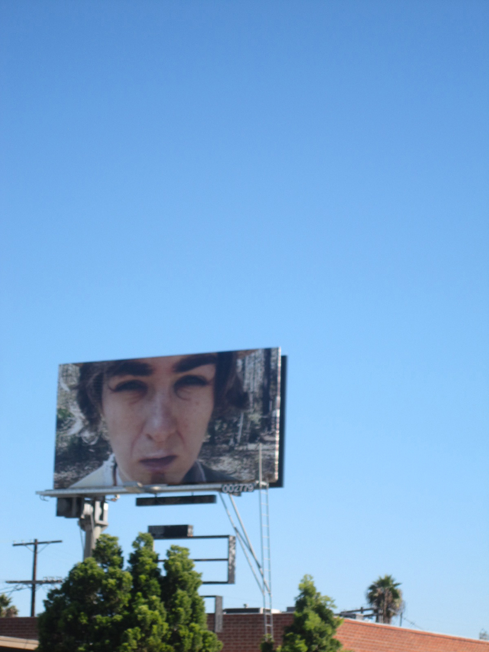 The Loner billboard 2010