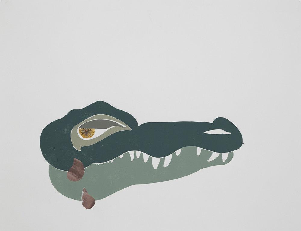 Crocodile, 2017