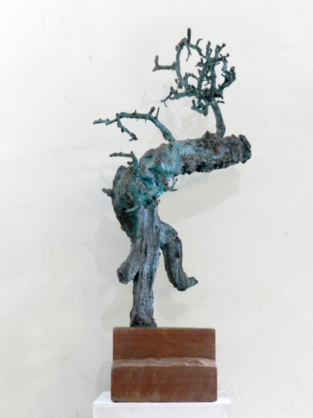 Bonsai Man 01.jpg