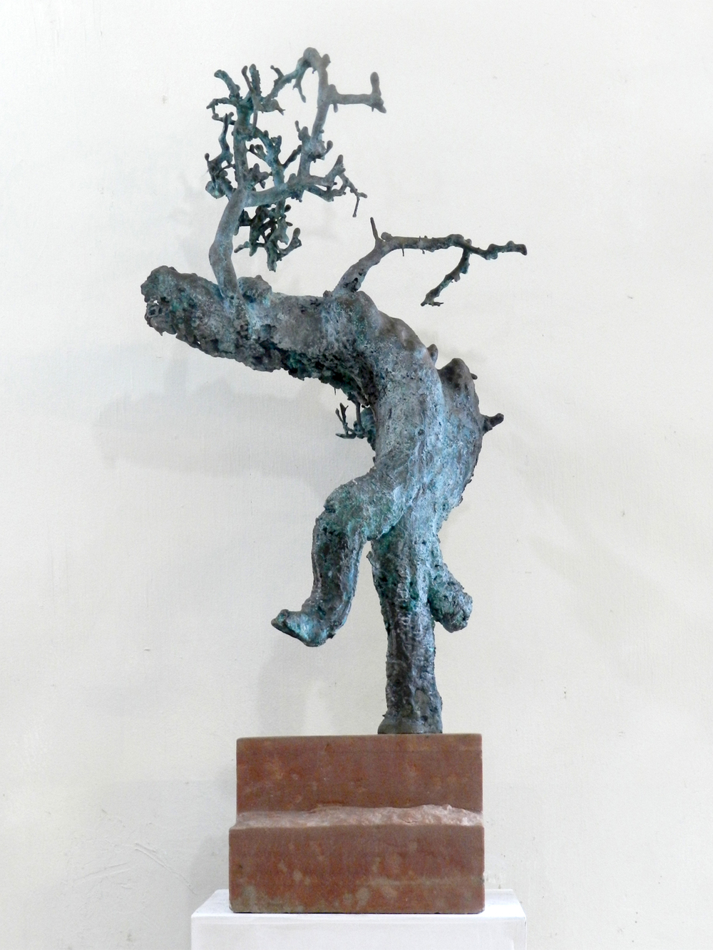Bonsai Man 03.jpg