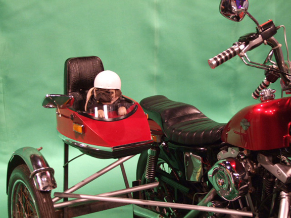 pug side car for SNL