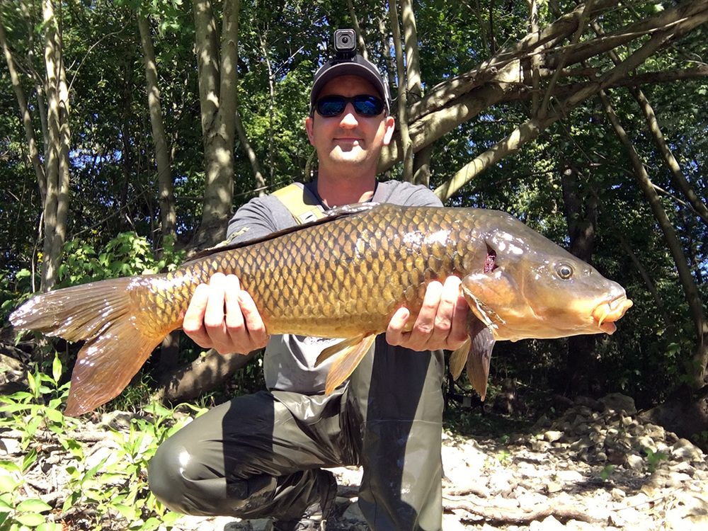 """The third carp I caught on a micro-nuke egg, this fish was in the 25-26"""" range."""