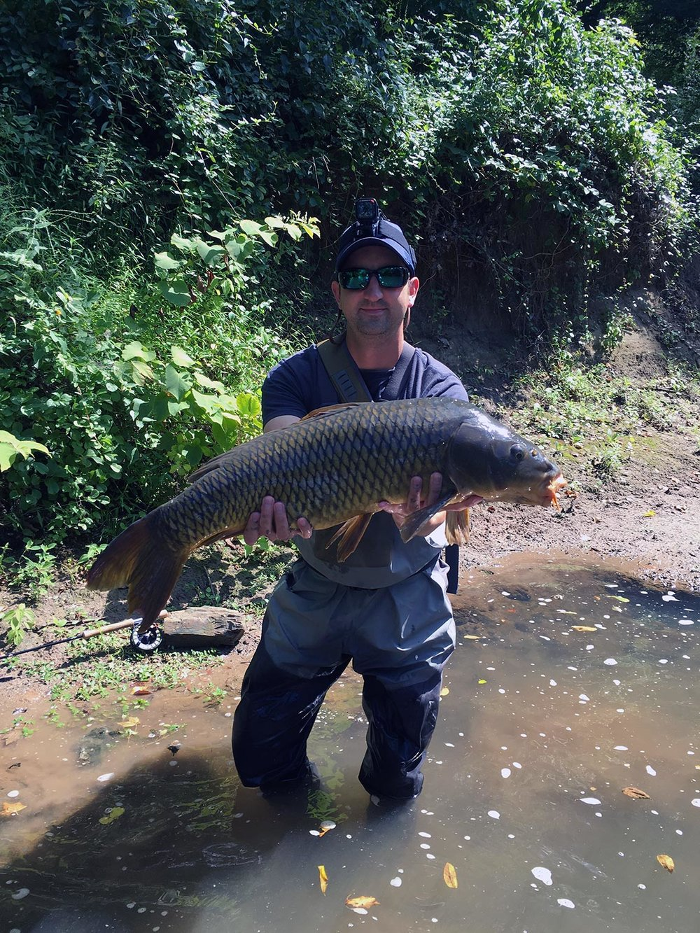 "The 32"" carp that a kind stranger took a picture of."