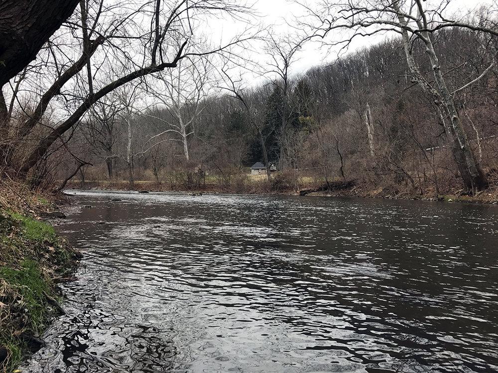 Looking upstream on the Tulpehocken Creek just above the Rt. 222 bridge.