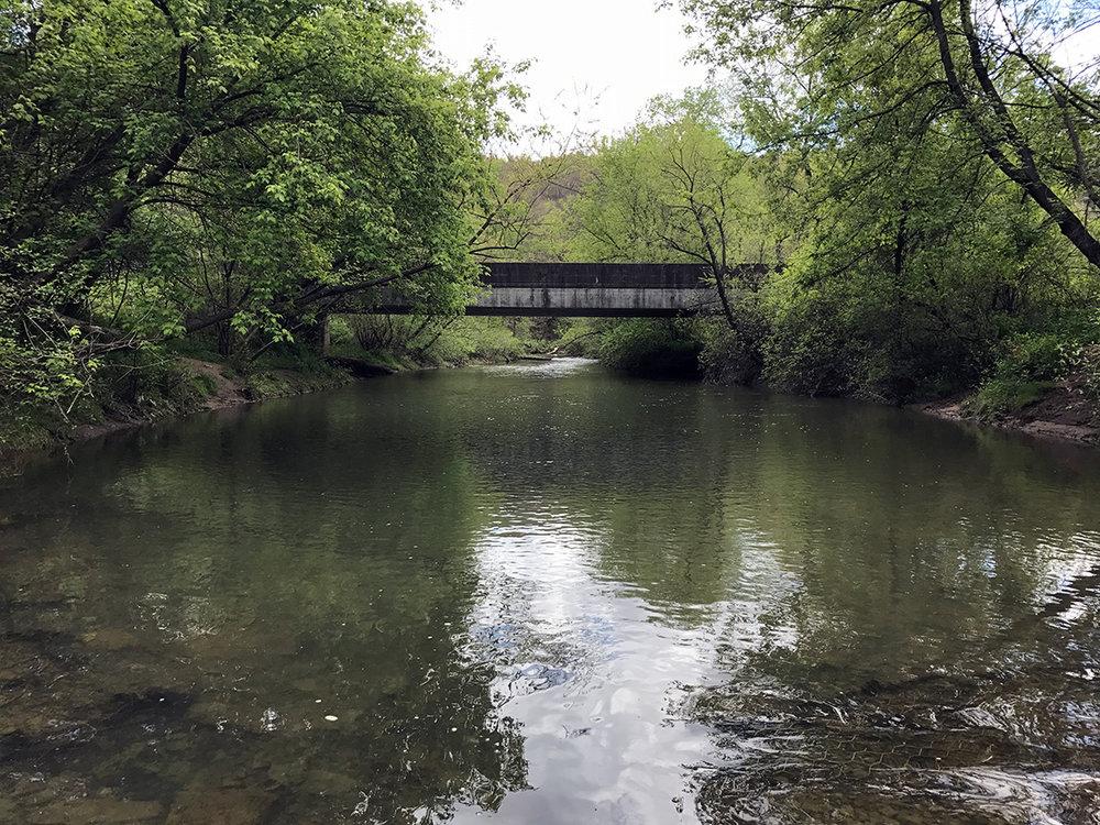 Looking upstream on the Buffalo Creek.