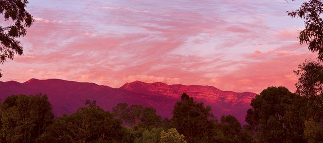 Pink Moment in Ojai...
