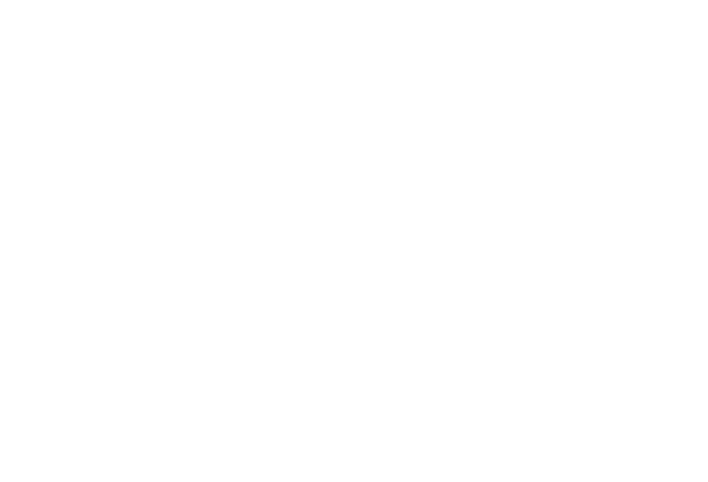 VP Dog Training
